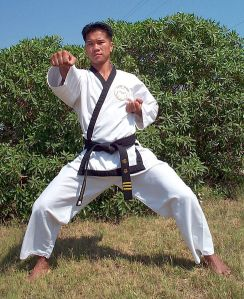 488px-US_Navy_020726-N-5817F-001_LT_Salvador_Convento,_World_Champion_2nd_Degree_Blackbelt_in_Tang_Soo_Do