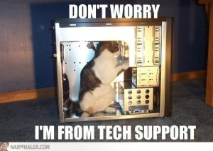 cat-tech-support-fixing-computer-YinHXR