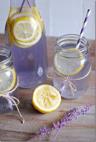 Eat Yourself Skinny makes a mean lemonade!